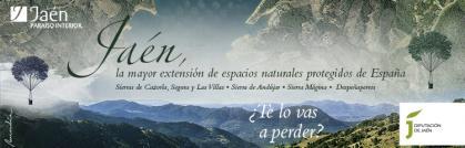 Imagen de portada de Diputación Provincial de Jaén