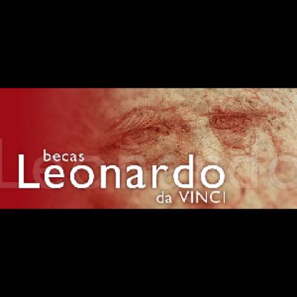 Imagen de portada de Leonardo Da Vinci. Vínculos de las entidades beneficiarias en 2013
