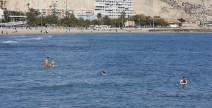 Imagen de portada de Empleo en Alicante