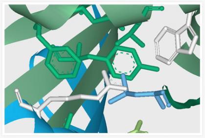 Imagen de portada de Contratos de investigación y III
