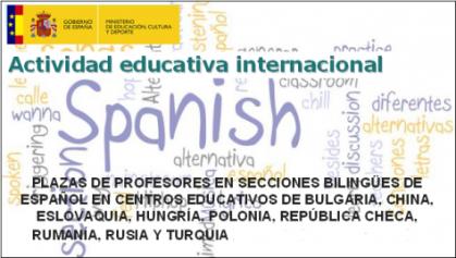 Imagen de portada de Secciones bilingües de español en centros educativos de Europa central, oriental y China