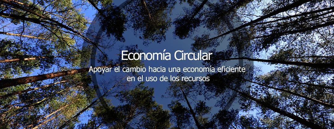 Imagen de portada de La economía circular es la intersección de los aspectos ambientales, económicos y sociales.