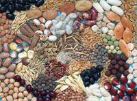 Imagen de portada de Tecnología agraria y pesquera