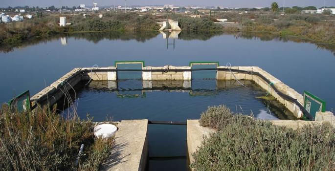 Imagen de portada de Centros IFAPA. El Toruño (Cádiz) y La Mojonera (Almería)