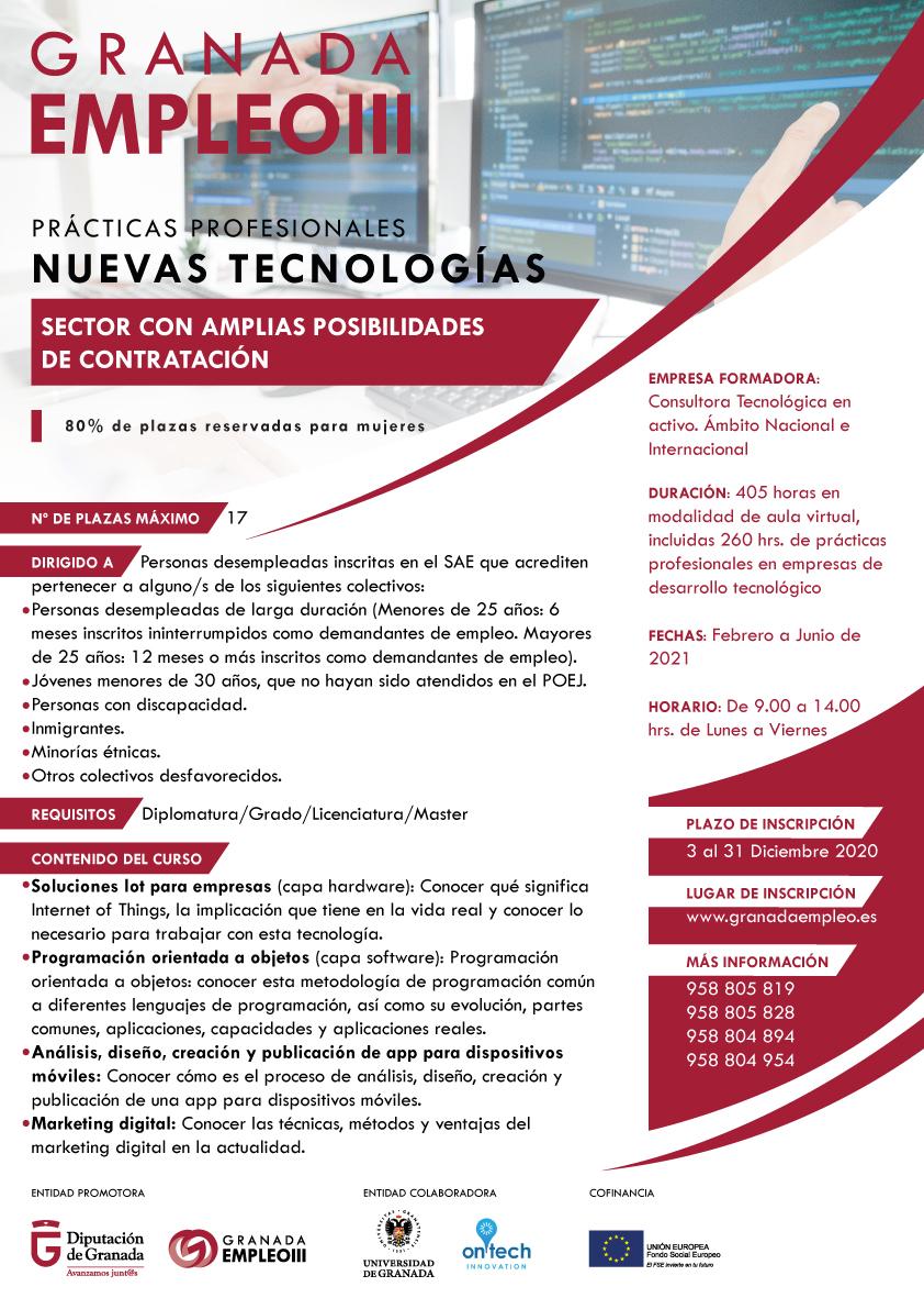 Imagen de portada de Prácticas profesionales nuevas tecnologías on line.