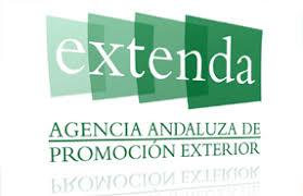Imagen de portada de Ampliación del plazo de ejecución para el desarrollo de la fase de internacionalización en empresas