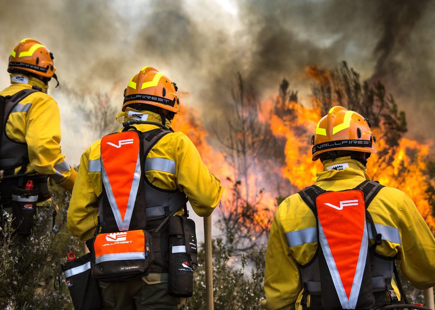 Imagen de portada de Especialidades de  prevención y extinción
