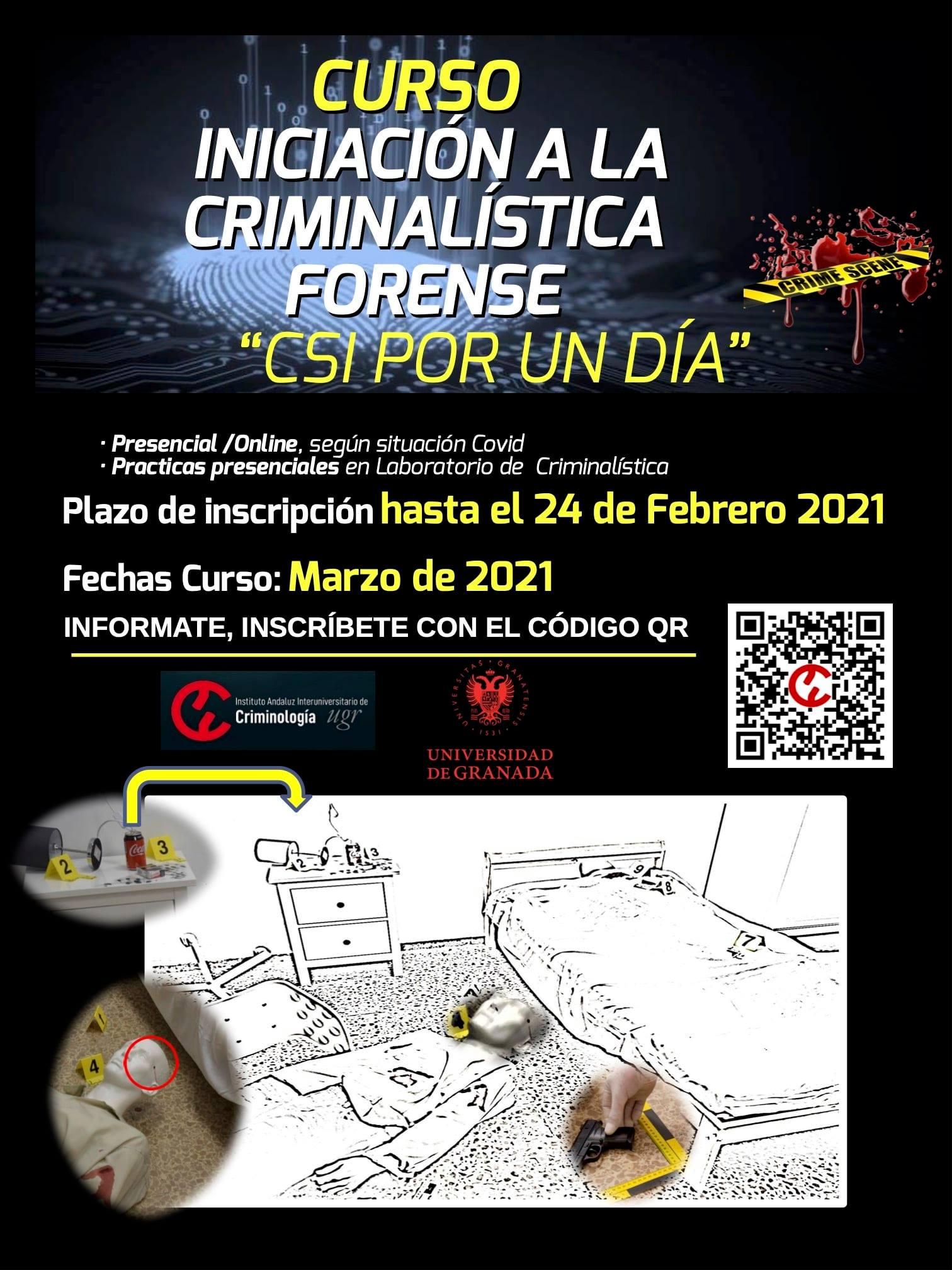"""Imagen de portada de """"CSI por un día"""""""