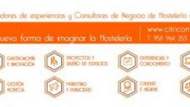 Consultores-e1507128758600