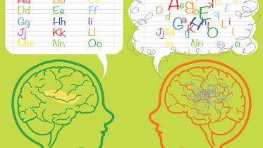 Dyslexia brain