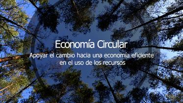EconomiiaCircular