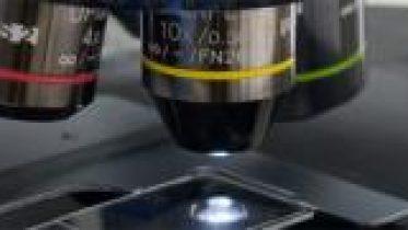 Microscopi_cap