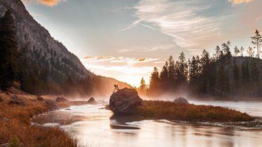 Yellowston