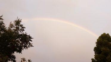arcoirishr