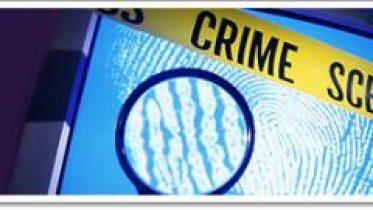 seguridad_delitosyciberterror